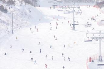 【1日リフト券付き】スキー&スノーボードプランのイメージ
