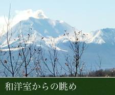 和洋室からの眺めのイメージ